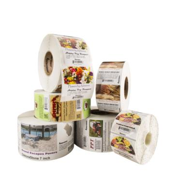 CONSUMABILI - HONEYWELL SUPPLIES - LABELS - PLASTIC